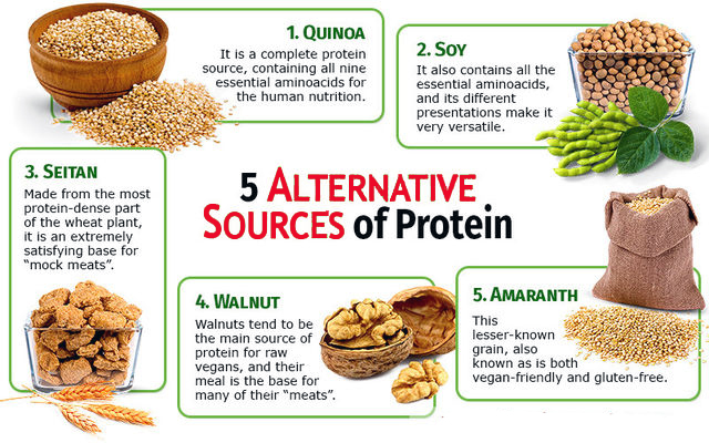 What Are Alternative Proteins?